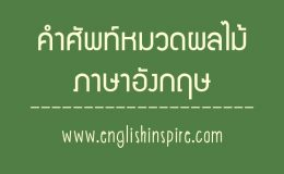 รวมคำศัพท์ผลไม้ภาษาอังกฤษคำอ่านและคำแปล