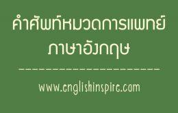 รวมคำศัพท์เกี่ยวกับการแพทย์และการรักษารวมทั้งคำอ่านคำแปล