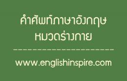 คำศัพท์หมวดร่างกายภาษาอังกฤษ