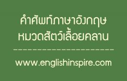 คำศัพท์สัตว์เลื้อยคลานภาษาอังกฤษ
